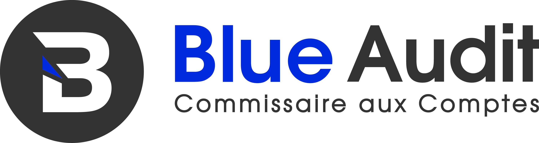 logo blue audit